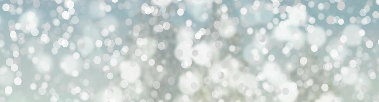 Holiday blog_banner.png