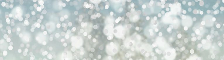 Holiday blog_banner.png